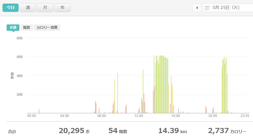fitbitログより 運動データ2021年5月25日