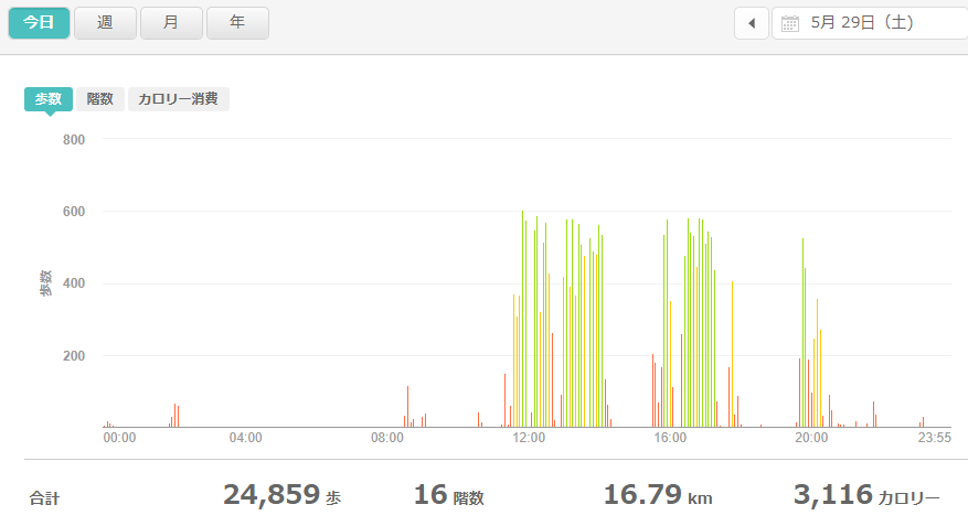 fitbitログより 運動データ2021年5月29日