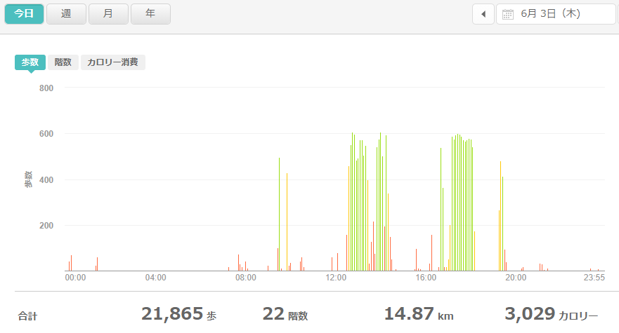 fitbitログより 運動データ2021年6月3日