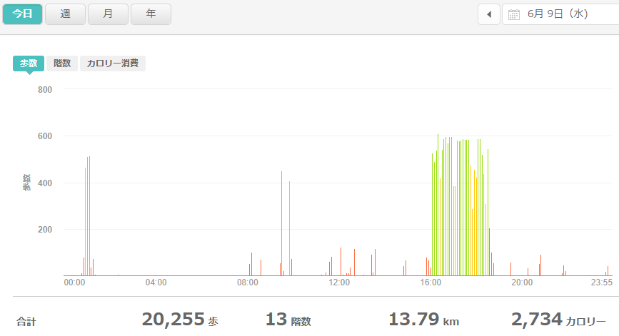 fitbitログより 運動データ2021年6月9日