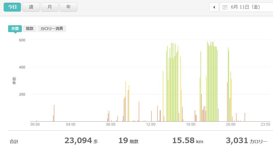 fitbitログより 運動データ2021年6月11日