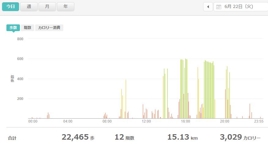fitbitログより 運動データ2021年6月22日