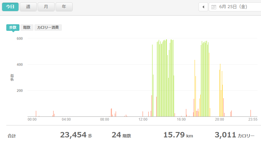 fitbitログより 運動データ2021年6月25日