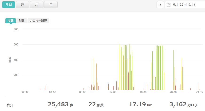 fitbitログより 運動データ2021年6月28日