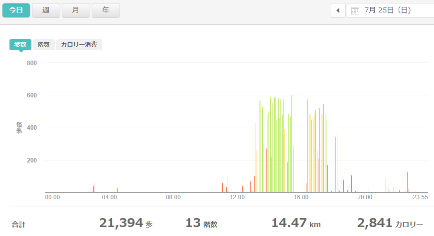 fitbitログより 運動データ2021年7月25日