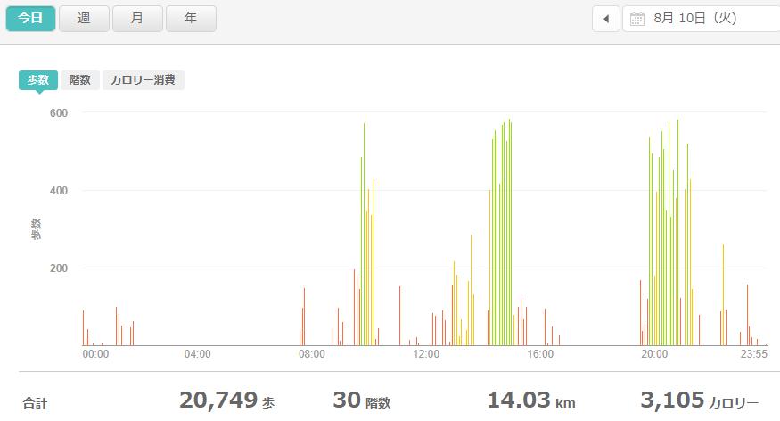 fitbitログより 運動データ2021年8月10日