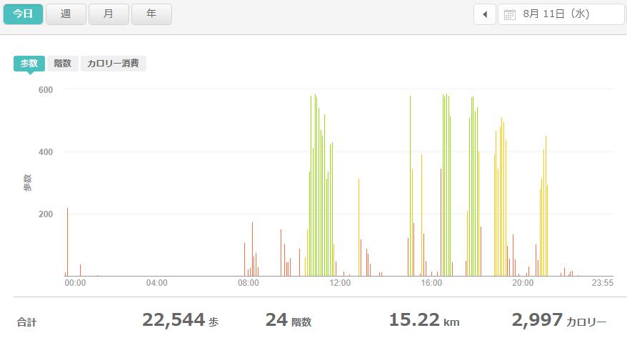 fitbitログより 運動データ2021年8月11日