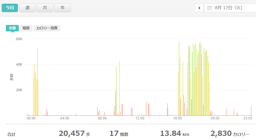 fitbitログより 運動データ2021年8月17日