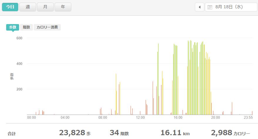 fitbitログより 運動データ2021年8月18日