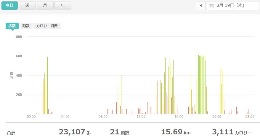 fitbitログより 運動データ2021年8月19日