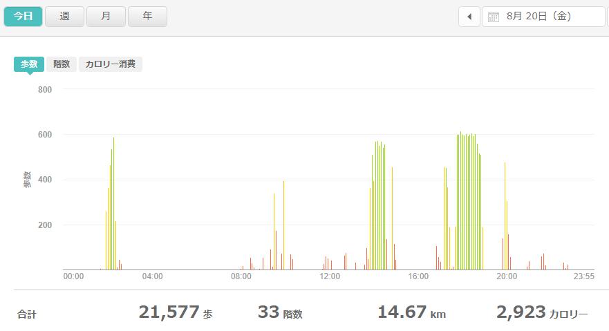 fitbitログより 運動データ2021年8月20日