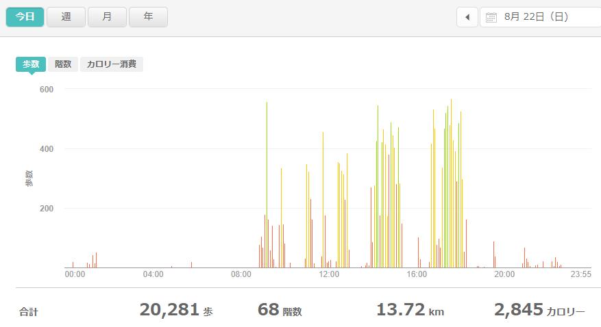 fitbitログより 運動データ2021年8月22日