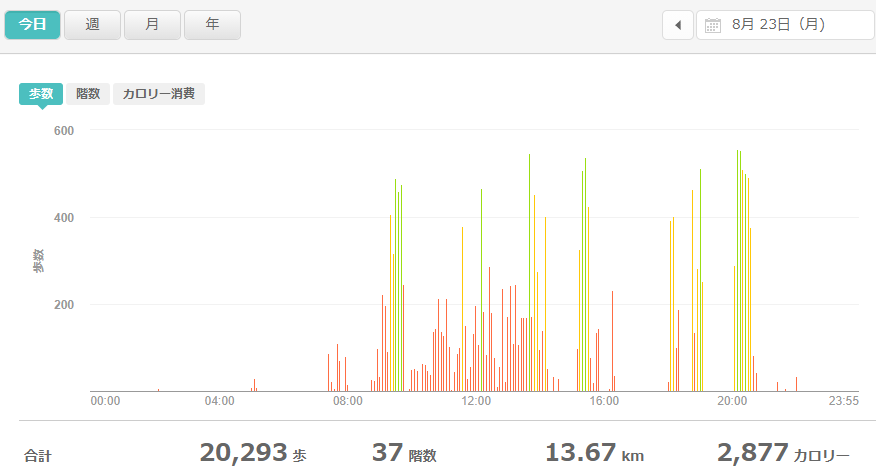 fitbitログより 運動データ2021年8月23日