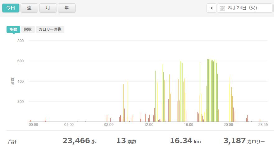 fitbitログより 運動データ2021年8月24日