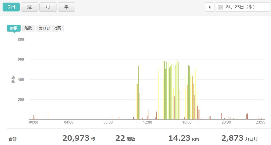 fitbitログより 運動データ2021年8月25日
