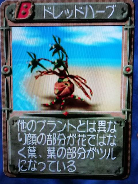 f:id:umimizukonoha:20200207005539j:plain