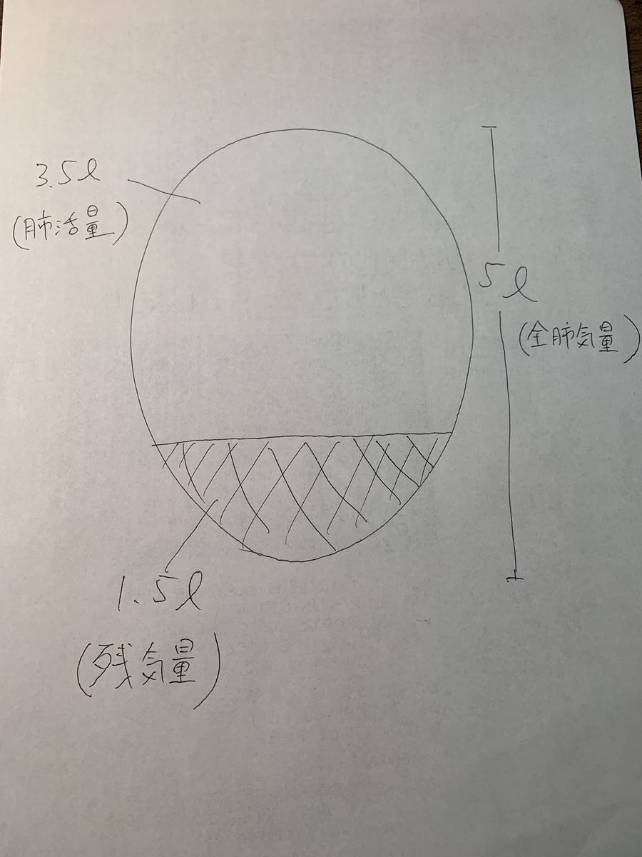 f:id:umisuki-ikka:20200228161745j:plain