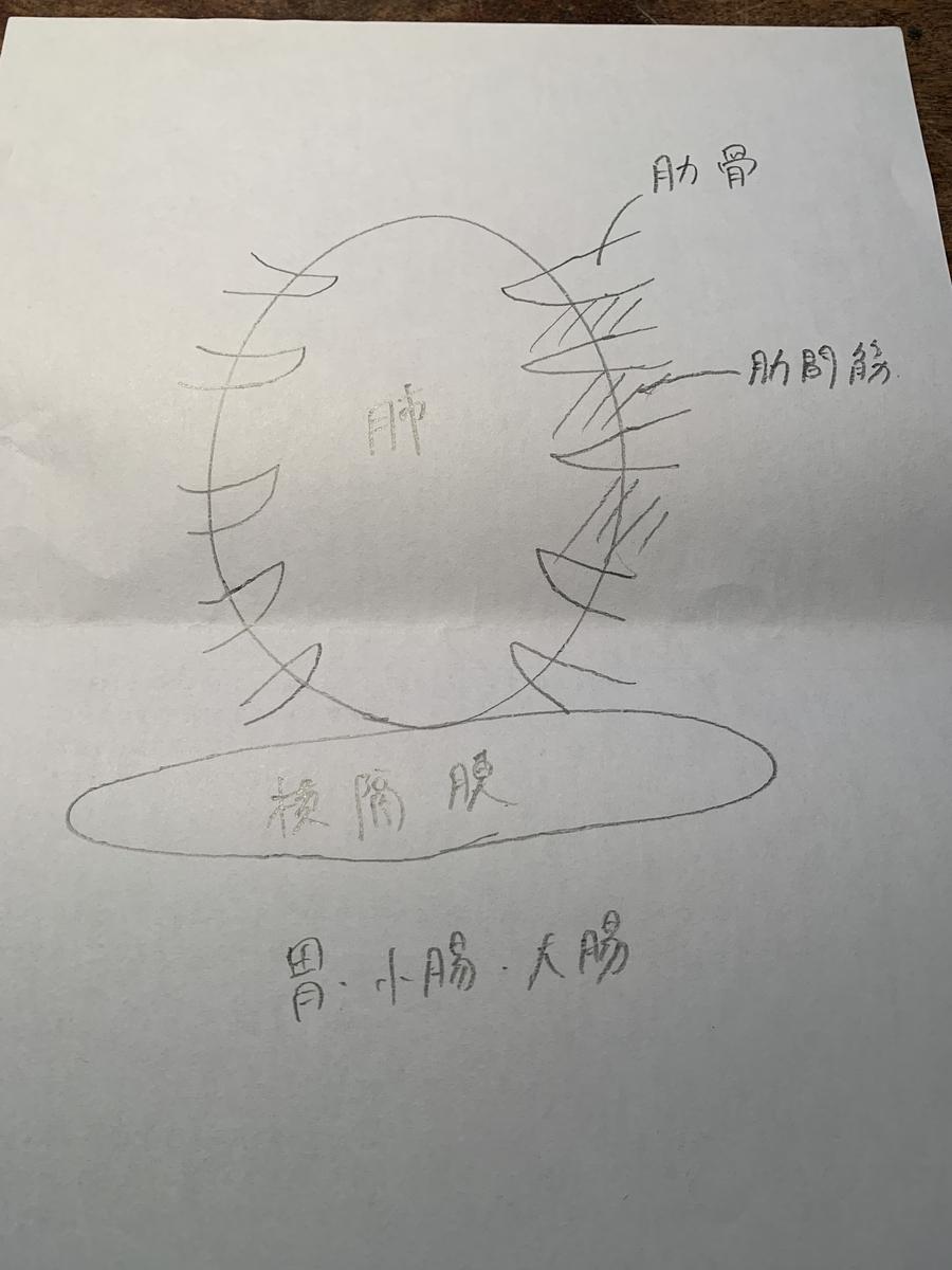 f:id:umisuki-ikka:20200229161159j:plain