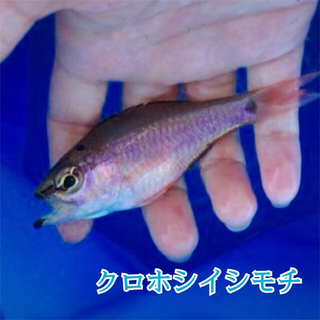 f:id:umitokaze0912:20170330115417j:plain