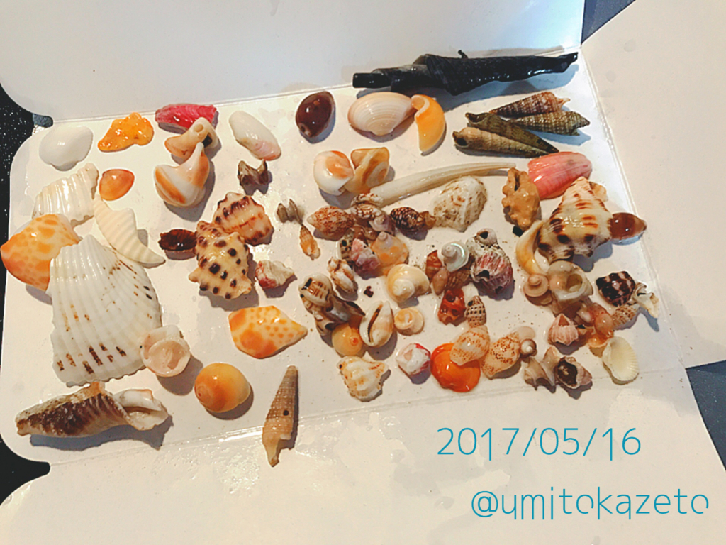 f:id:umitokaze0912:20170516174749j:plain