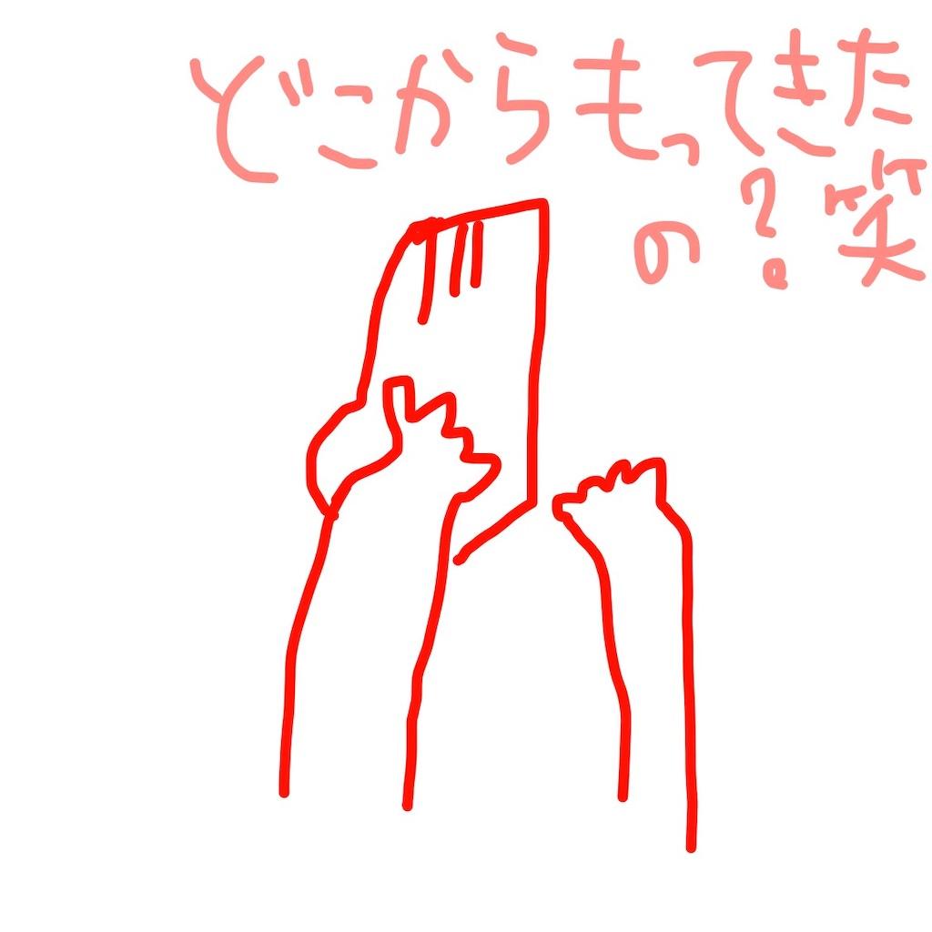 f:id:umitokaze0912:20190214013814j:image