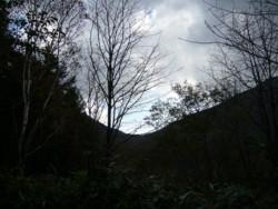 f:id:umiwa:20081013141338j:image