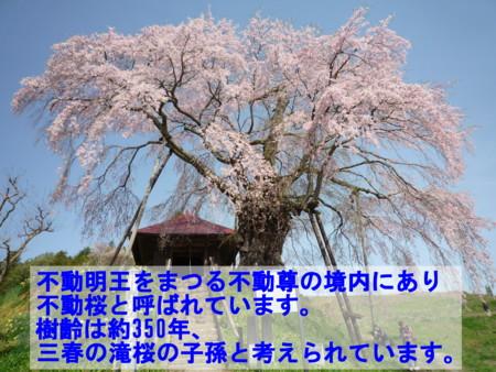 f:id:umiwa:20120429083846j:image