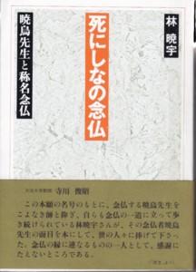f:id:umiyamabusi:20110504084428j:image