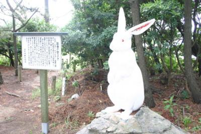f:id:umiyamabusi:20110822072211j:image