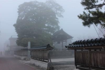 f:id:umiyamabusi:20150401054052j:image