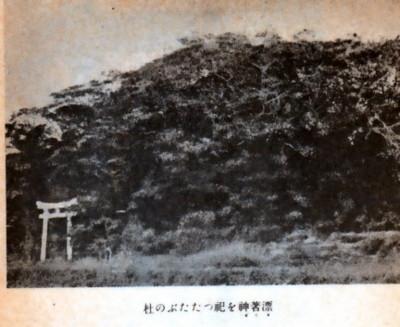 f:id:umiyamabusi:20160221201421j:image