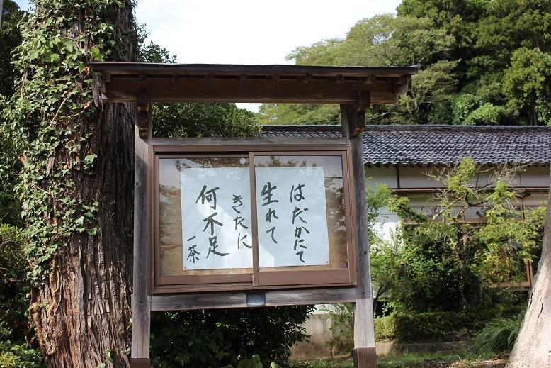 f:id:umiyamabusi:20200917201008j:plain