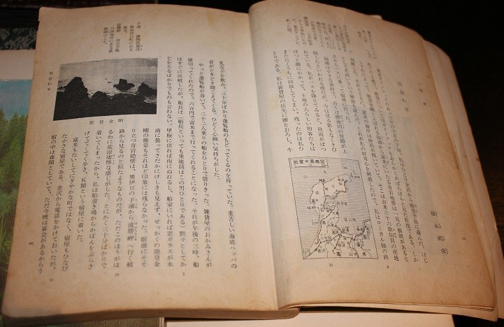 f:id:umiyamabusi:20201201205424j:plain