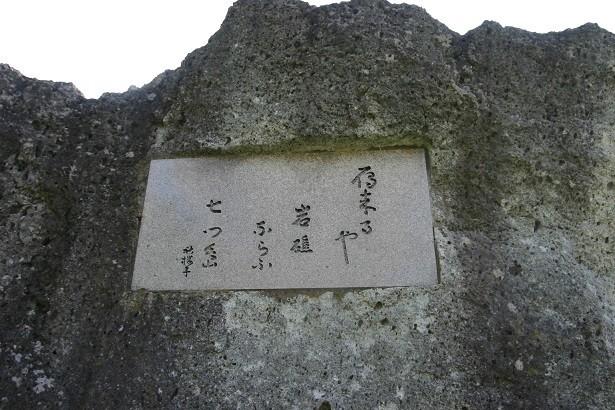 f:id:umiyamabusi:20210131201948j:plain