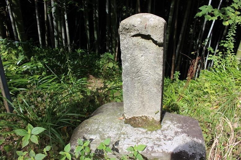 f:id:umiyamabusi:20211003152016j:plain