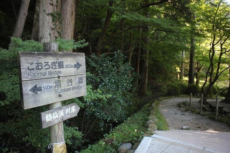 f:id:umiyamabusi:20211003152108j:plain