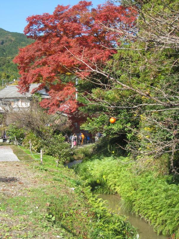 f:id:umiyamasachi:20121118131226j:image:w360:right