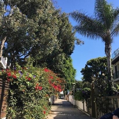 ロサンゼルス ベニスビーチ