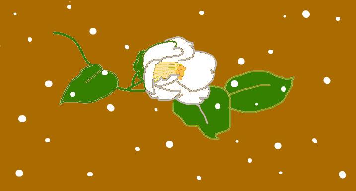 f:id:umryuyanagi104:20120116172354j:image:w360