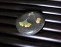 f:id:umryuyanagi104:20121001121339j:image:medium:right