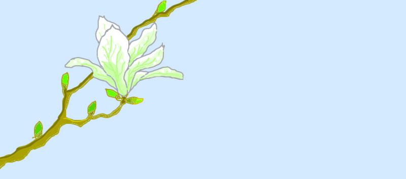 f:id:umryuyanagi104:20130303141300j:image:w360