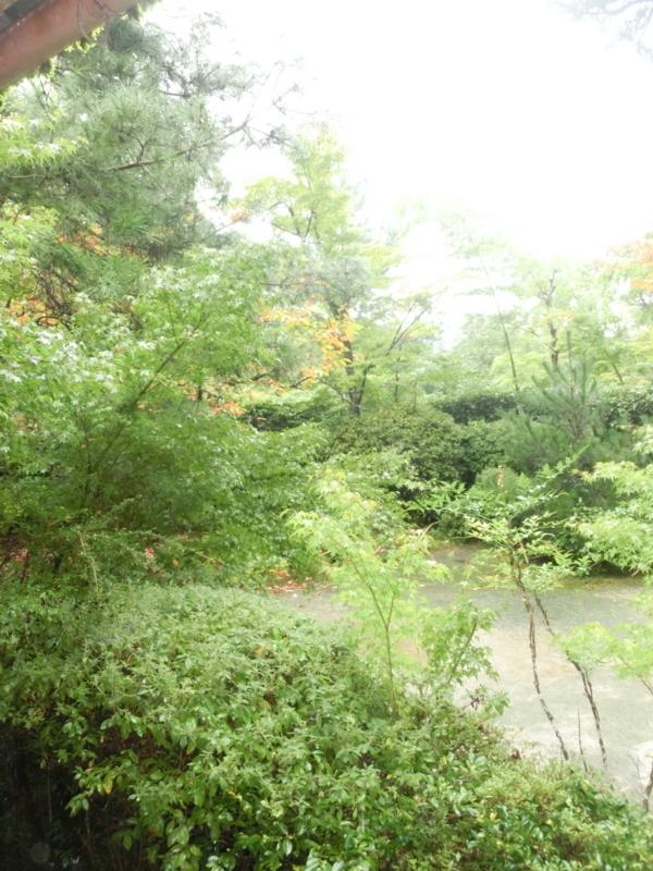 f:id:umryuyanagi104:20171015144109j:image:w360