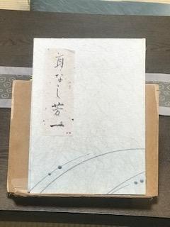 f:id:umryuyanagi104:20190726102034j:plain