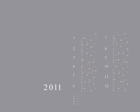 20110101113102