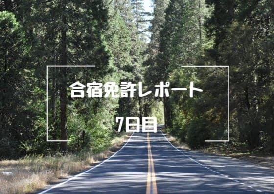 f:id:unamushi:20181201122629j:plain