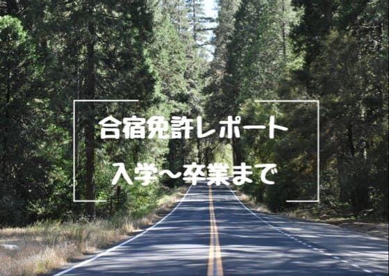f:id:unamushi:20181201122646j:plain