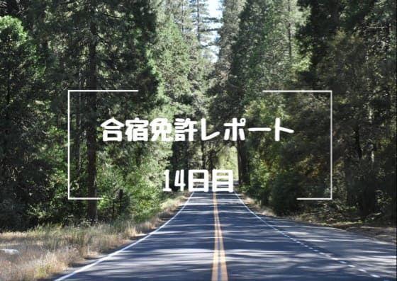 f:id:unamushi:20181201122654j:plain