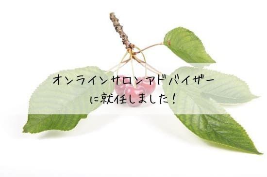 f:id:unamushi:20190224210909j:plain