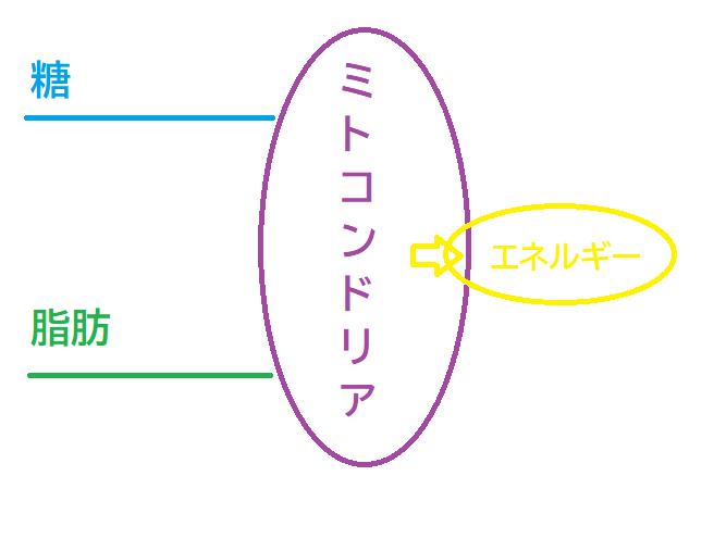 f:id:unnunkannung:20210625161448p:plain