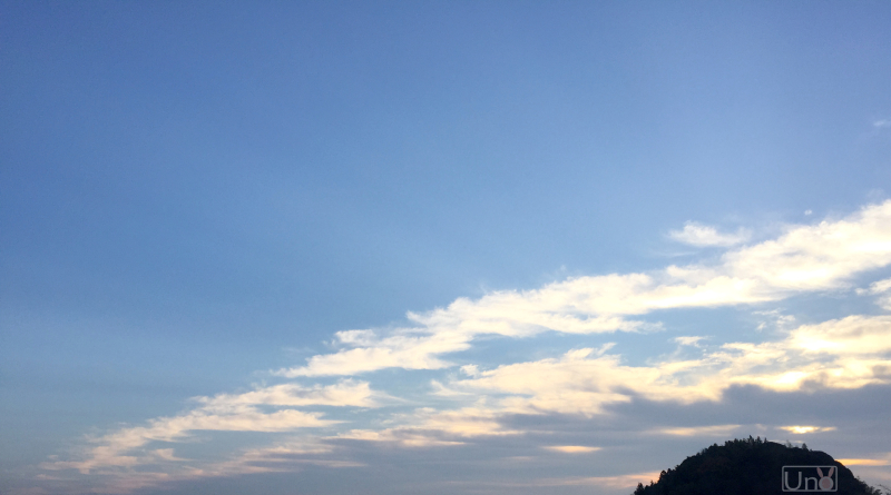 冬の朝日の写真